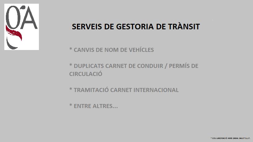 SERVEIS DE GESTORÍA